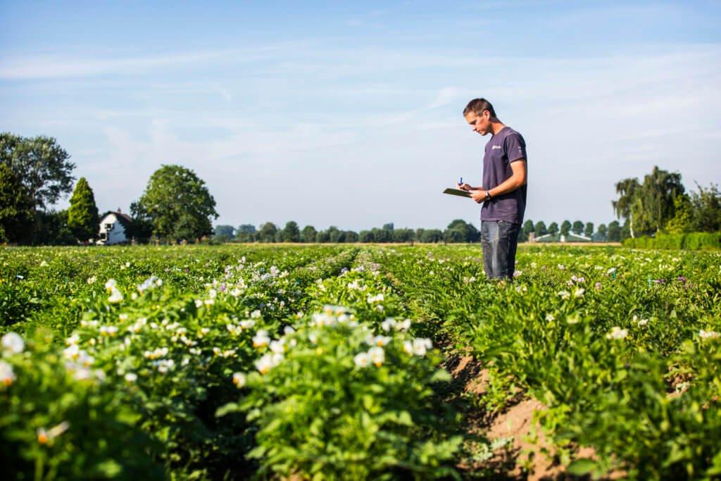 Landbouw Farm Jobs